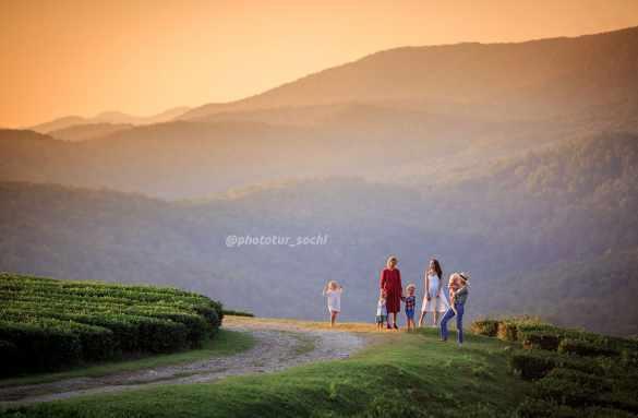 Фотосессия на чайных плантациях Мацесты в Сочи