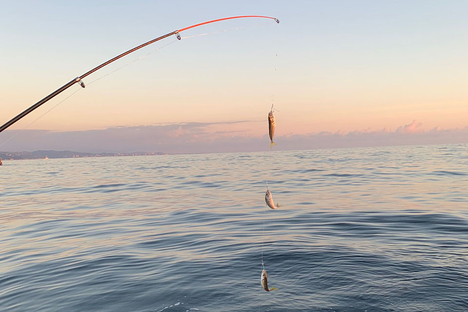Скидка на рыбалку на яхте в Сочи