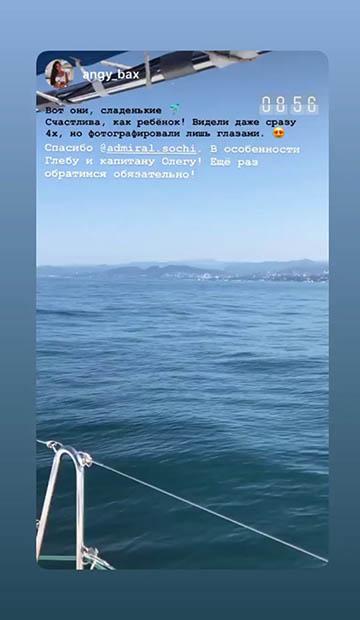 Парусная яхта Beneteau 43 отзывы