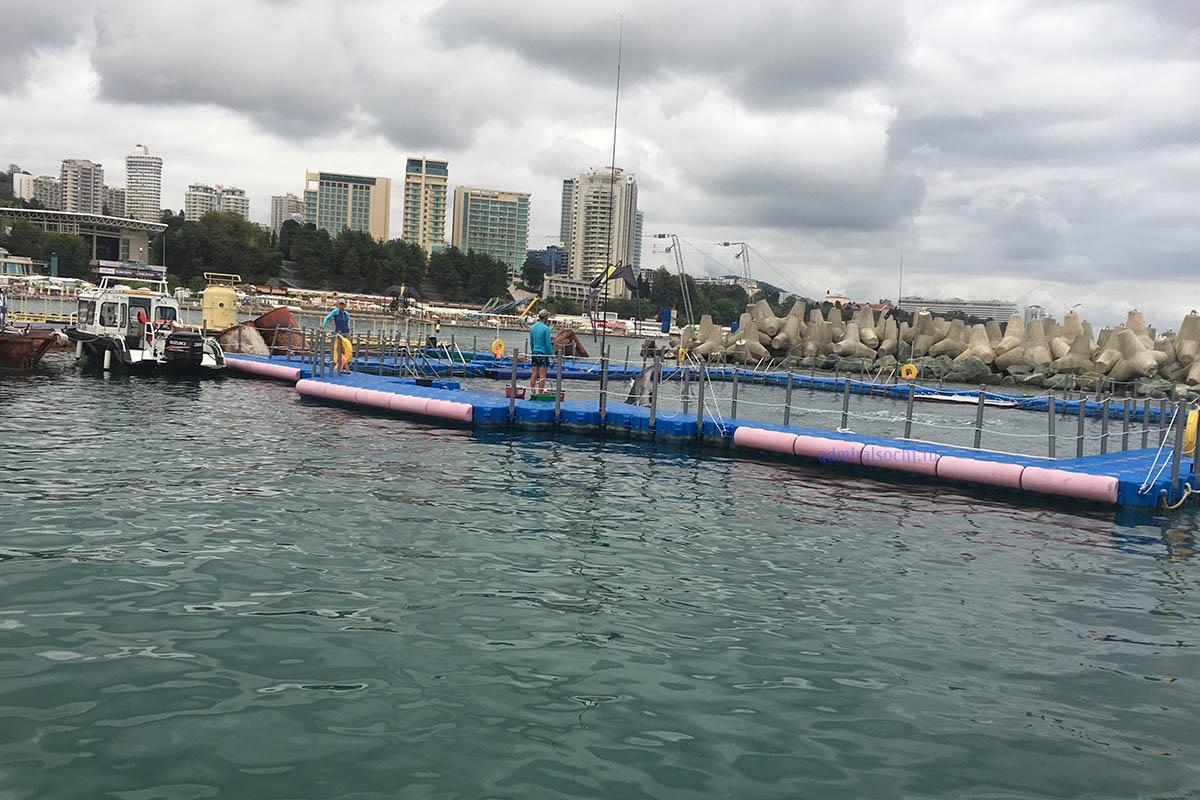 Дельфинарий в морском порту